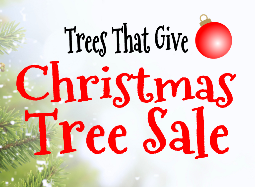 tree sale words graphic - Christmas Trees Sale